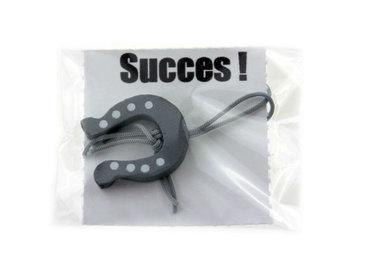 Gelukszakje Succes met gelukshoefijzer