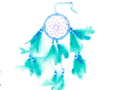 Dromenvanger 8 cm aqua
